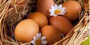 Диеты на яйцах и фруктах